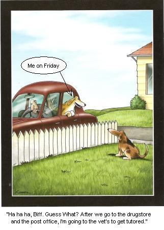 Far Side Cartoon Dog Going To Get Tutored